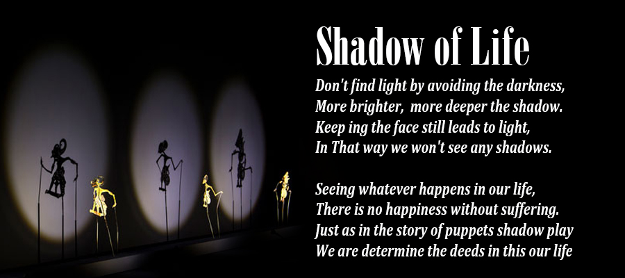 Shadow of Life | Life Sloka